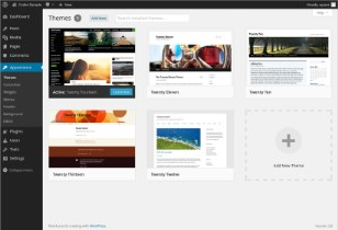 Screenshot of the WordPress themes page in the admin area
